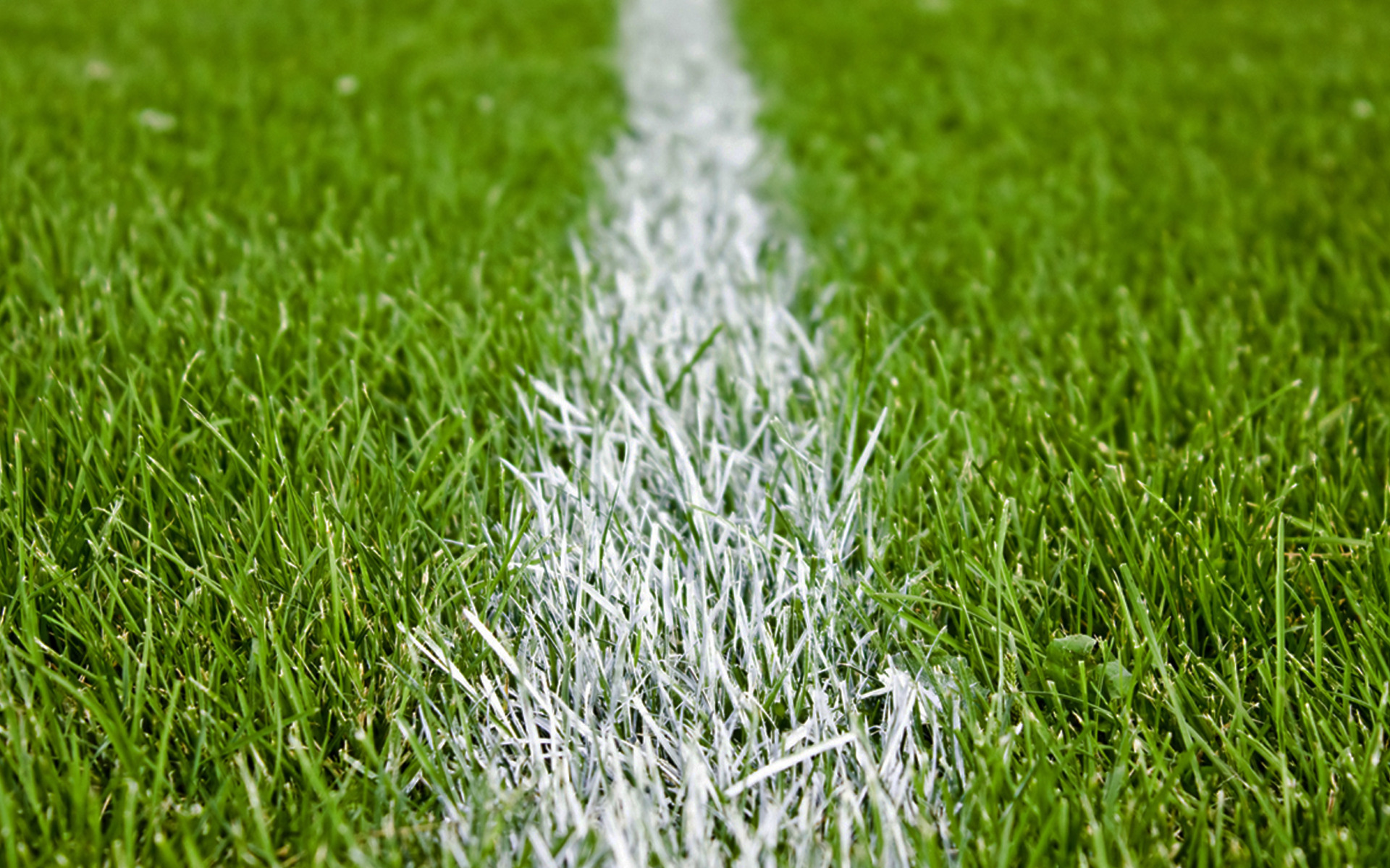 football-grass-pitch-101072.jpg